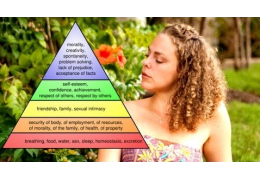 Maslow's Hierarchy Of Needs & Psychetruth